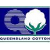 Queensland Cotton